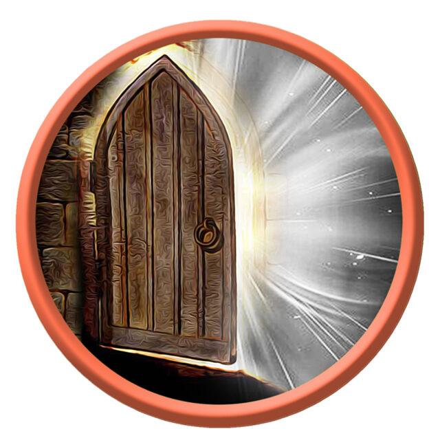 35_дверь