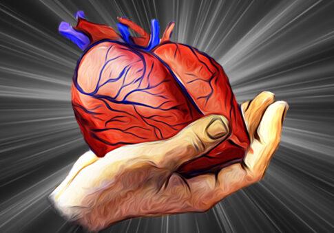 30_сердце